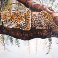 Jaguar aux aguêts / huile - 46x33cm